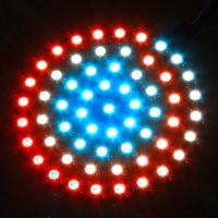 بورد WS2812 5050 RG  LED دایره ای با 61 LED